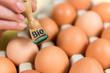 stempel auf eier