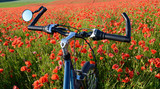 bike in poppies