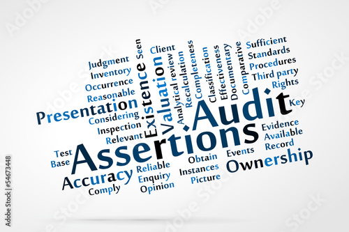 Audit Assertions word cloud with data sheet background