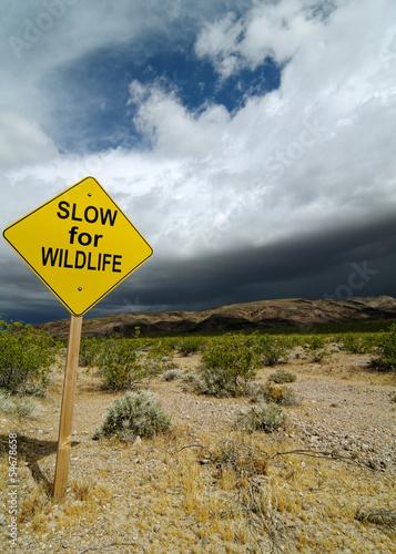 Road Sign in California Desert Tableau sur Toile