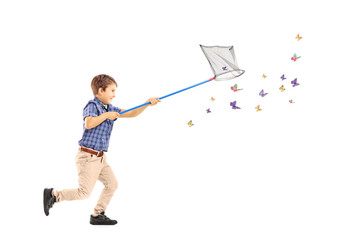 Full length portrait of a kid running and catching butterflies