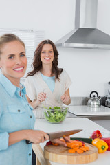 Relaxed women cooking together