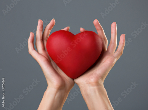 heart in woman`s palms