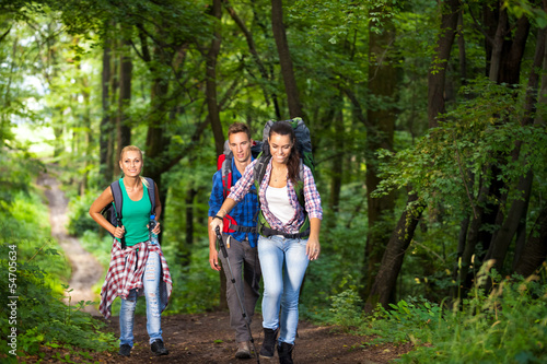 Smiling hikers in forest