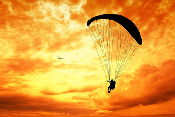 Paragliding silhouette at sunset