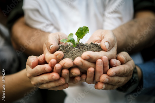 Hands of farmers family