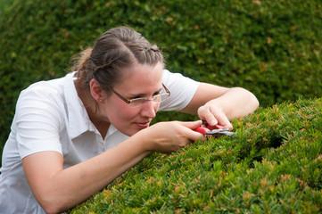 Junge Frau in Business Kleidung beschneidet Buchsbaum