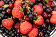 sweet summer berries: strawberries, cherry, currant, raspberry