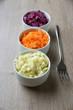 Schalen mit Möhren-,Rotkohl- und Weißkohlsalat