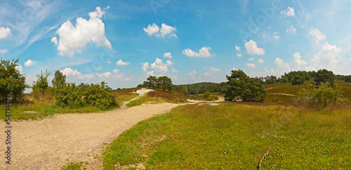Panoramic landscape of meadow with path and trees with blue clou