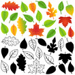 Vector Collection of Green, Autumn, Silhouette Leaves