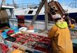 activité sur le port de pêche - 54730286