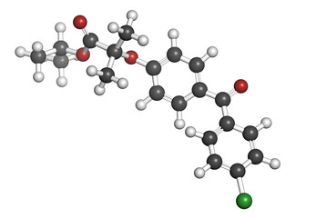 Fenofibrate cholesterol lowering drug (fibrate class)