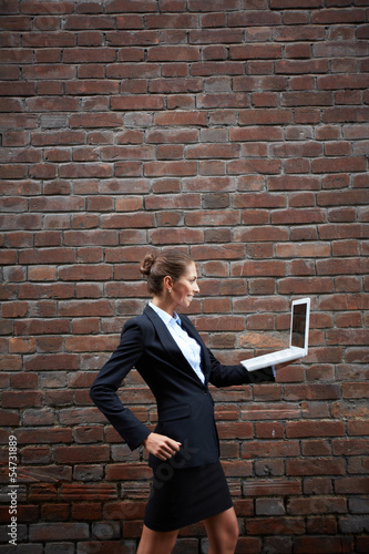 Portable internet