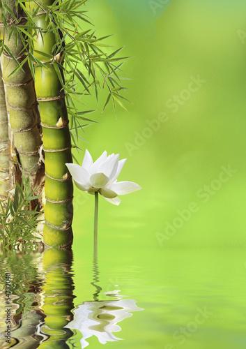 décor asiatique relaxant - 54732040