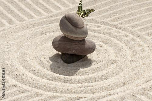 galets et papillon sur sable