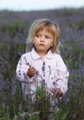 beautiful little girl in a lavender field