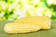 Fresh corn on bamboo mat, on bright background