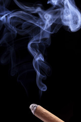 Abstract cigar smoke on black