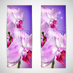 set of cards with blossom orchid