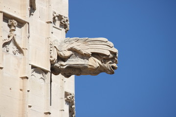 Gargoyle at La Lonja monument in Palma de Mallorca, Spain