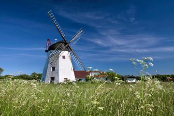 Windmühle Myreagre Molle auf Bornholm