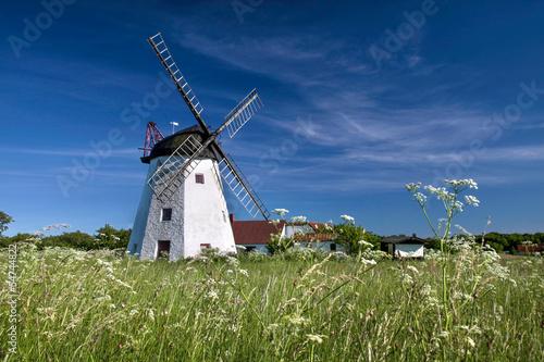 Staande foto Scandinavië Windmühle Myreagre Molle auf Bornholm