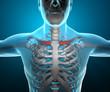 Corpo umano uomo raggi x clavicola scheletro dolore
