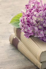 Old books with pink flowers
