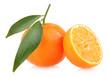 ripe mandarins isolated on white background