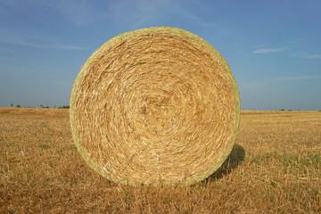 Strohballen - Landwirtschaft
