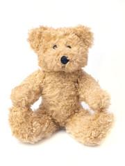Toy bear cub