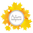 Autumn leaves with round frame