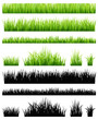 Green grass collection - 54768652