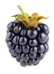 ripe blackberry (macro)