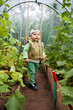 boy in a greenhouse with cucumbers