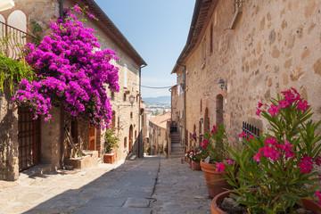 Castiglione della Pescaia, Liguria, Italy