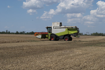 Покос пшеницы комбайном