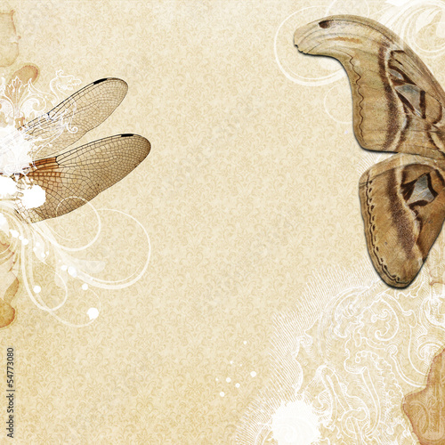 Vintagegrunge background with wings