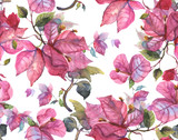 Bougainvillea Seamless Pattern