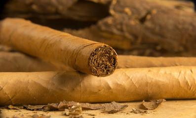Cigars All Rolled Up With Loose Tobacco Leaves