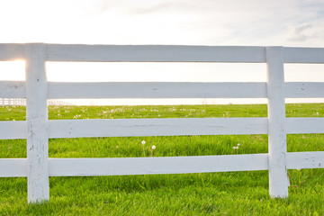 White wooden horse fence on country site.