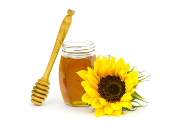 honey and sunflower on white background