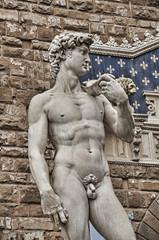 Michelangelo's David Sculpture Florence, Italy