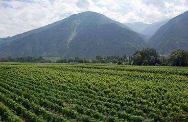 Schweiz, Wallis, Rhonetal