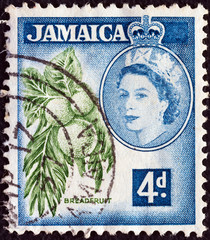 Breadfruits and Queen Elizabeth II (Jamaica 1956)