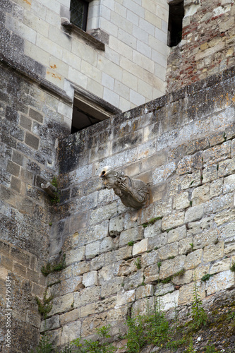 Poster Amboise castle .Valley of the river Loire. France
