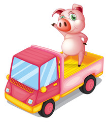 A pig in the truck