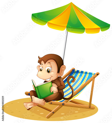 A monkey reading a book at the beach