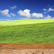 verte campagne derrière planche de bois brut